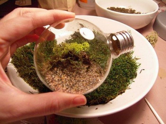 http://de.trinixy.ru/pics4/20110418/exotic_light_bulbs_14.jpg