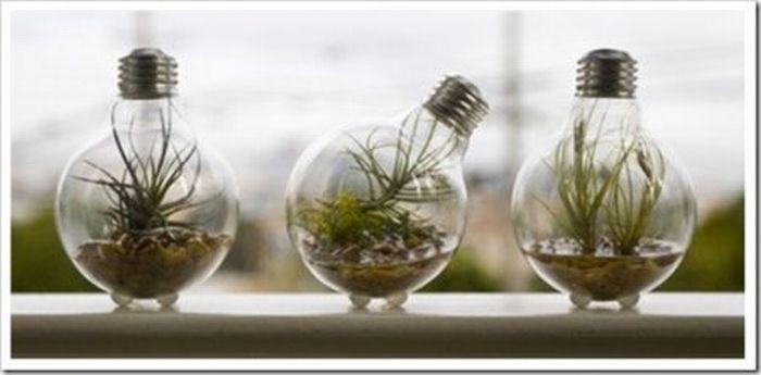 http://de.trinixy.ru/pics4/20110418/exotic_light_bulbs_17.jpg