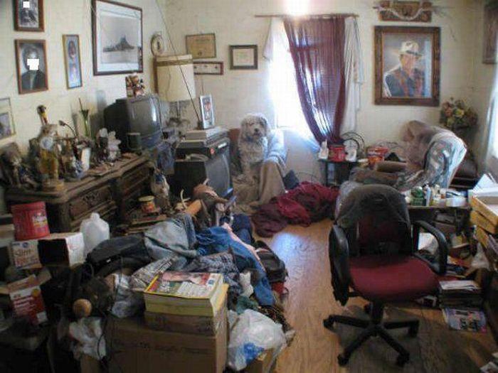 Грязные квартиры (22 фото)