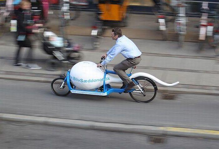 Креативный способ перевозки сперматозоидов (7 фото)