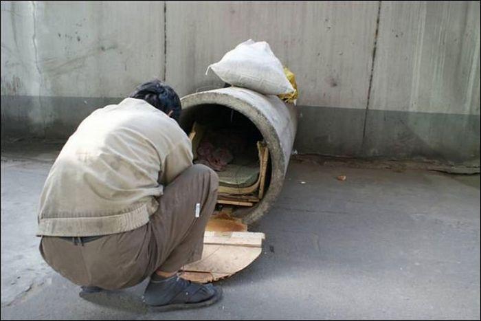 Жизнь в бетонной трубе (2 фото)