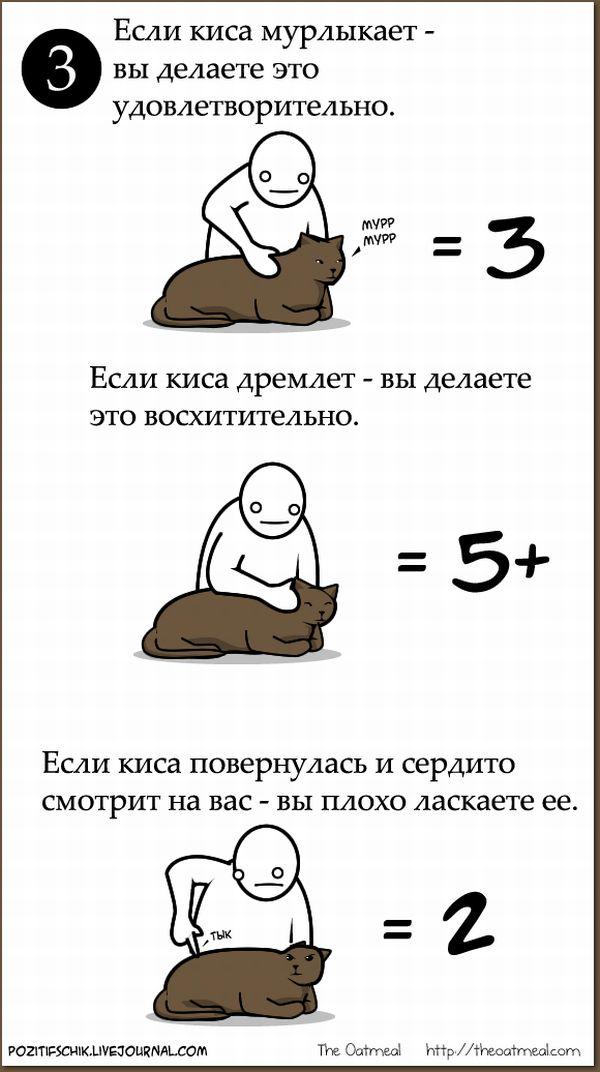 Инструкция, как приласкать кису (6 картинок)