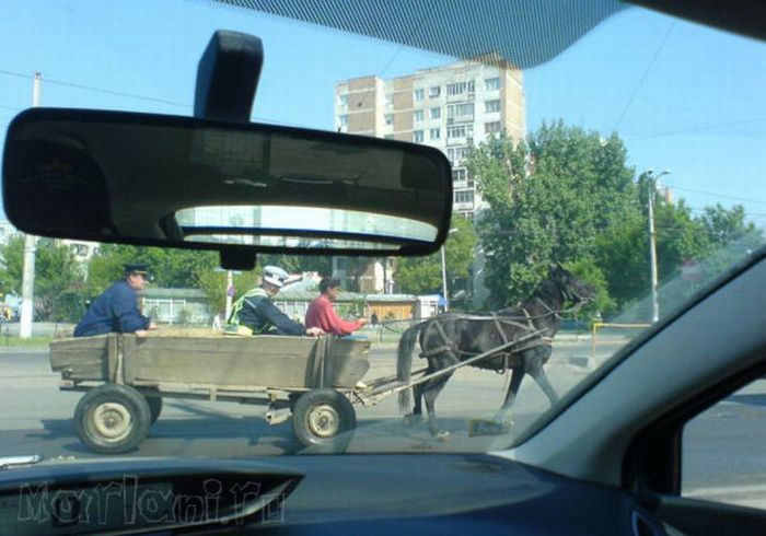 Автомобили Румынии (25 фото)