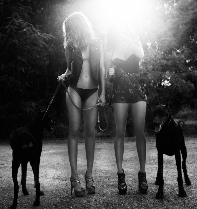 Отменные девушки (115 фото)