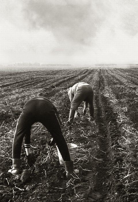 Частные фотографии жителей СССР (126 фото)