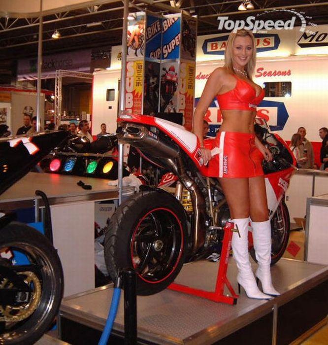 Девушки с мотошоу Ducati (92 фото)