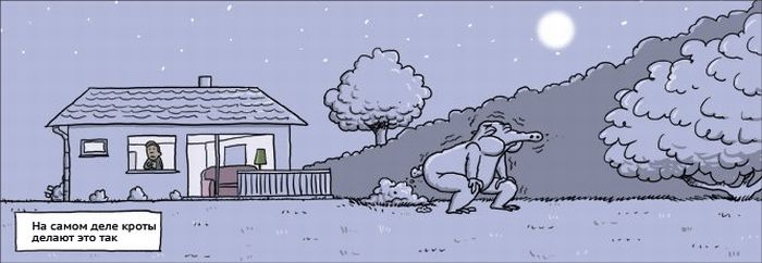 Комиксы от Wulff & Morgenthaler (26 картинка)