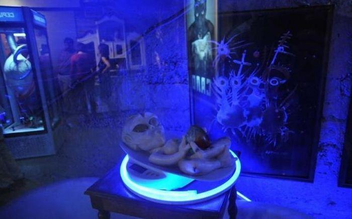 Музей во Львове, посвященный салу (19 фото)