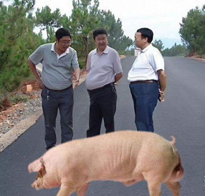 Фотожаба. Китайская пропаганда (44 фото)