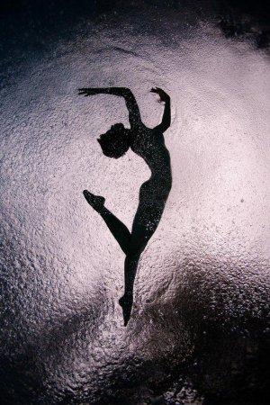 Красивые фотографии под водой от Howard Schatz (18 Фото)