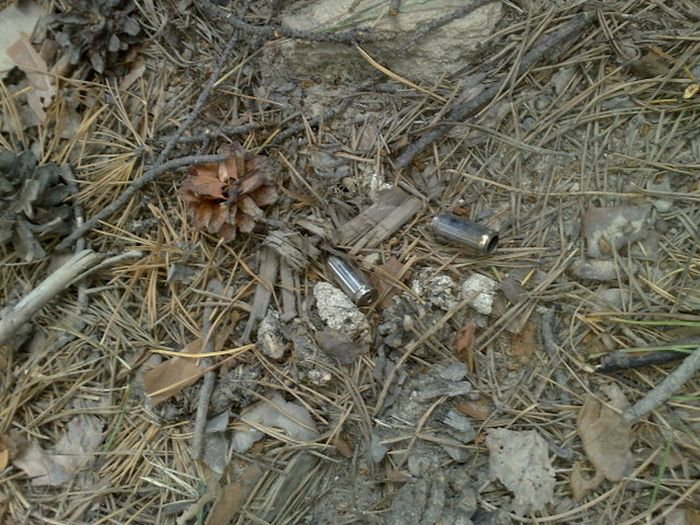Убийство под Екатеринбургом (6 фото + видео)