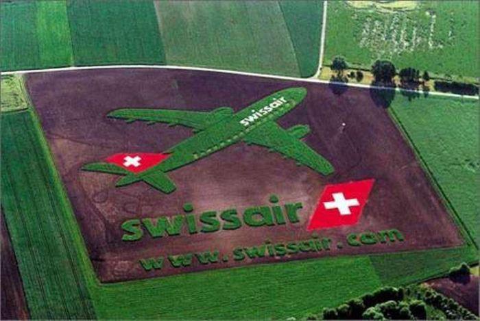 Удивительные картины на полях. Вид с самолета (12 Фото)