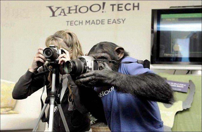 День фотографа (28 фото)