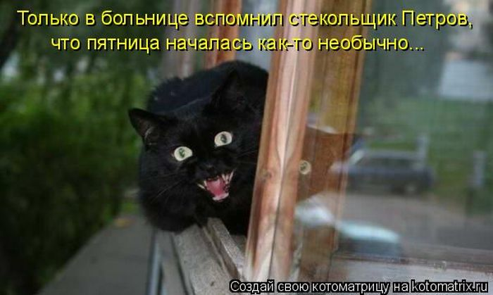 http://de.trinixy.ru/pics4/20110715/kotomatrix_11.jpg