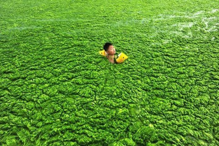 Пляж по-китайски (8 фото)