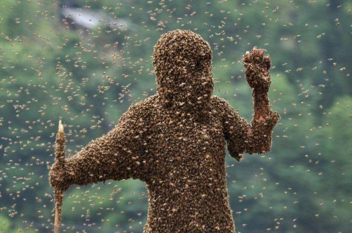 Человек-пчела из Китая (6 фото)