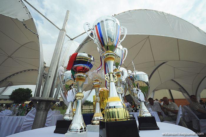 Чемпионат по джигитовке (34 фото)