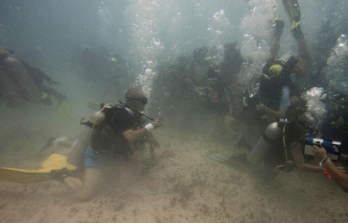 Подводная свадьба (7 фото)