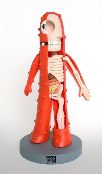 Игрушечная анатомия (30 фото)