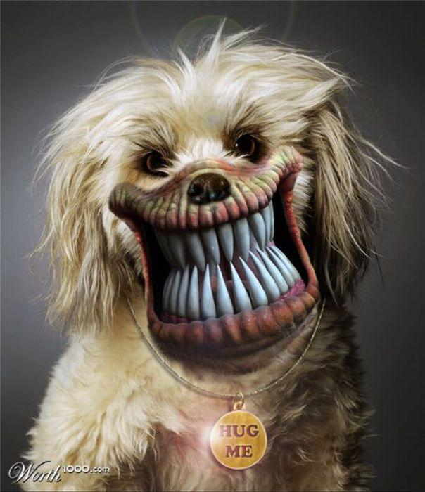 Страшные животные (51 фото)
