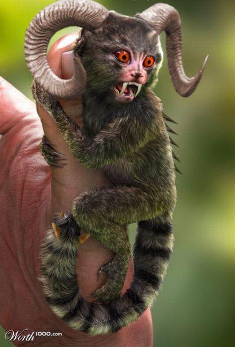 Самые красивые животные планеты