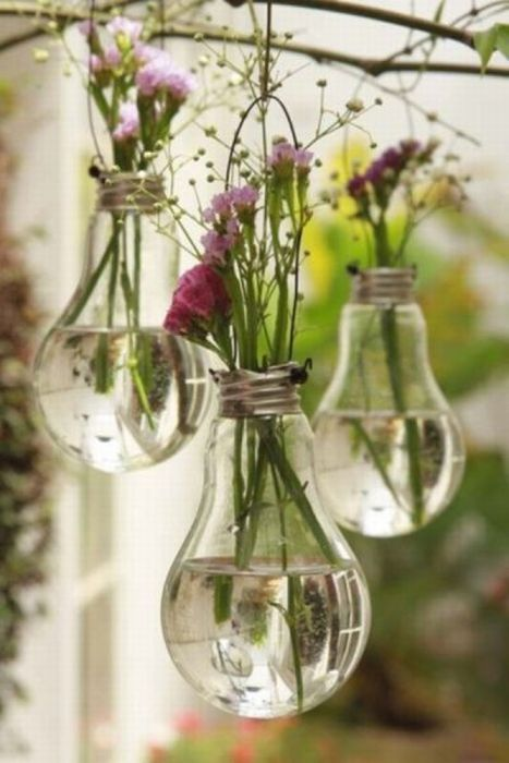 Вторая жизнь для лампочки (5 фото)