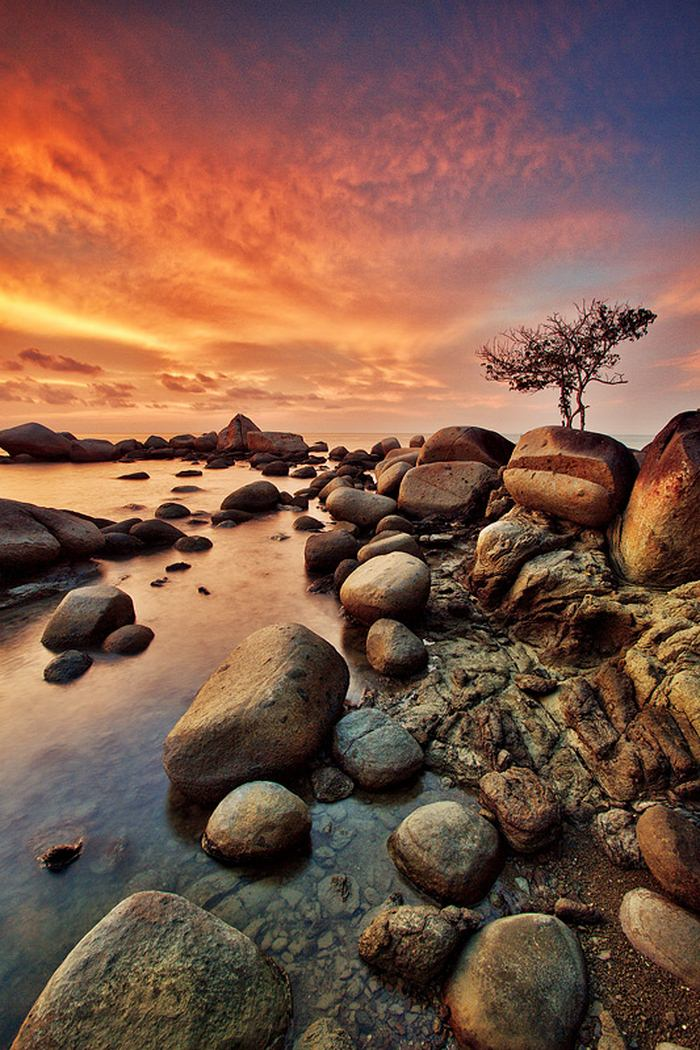 http://de.trinixy.ru/pics4/20110808/podb/3/beautiful_nature_16.jpg