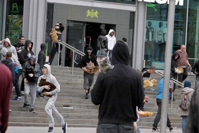 http://de.trinixy.ru/pics4/20110811/hilarious_photoshopped_london_44.jpg
