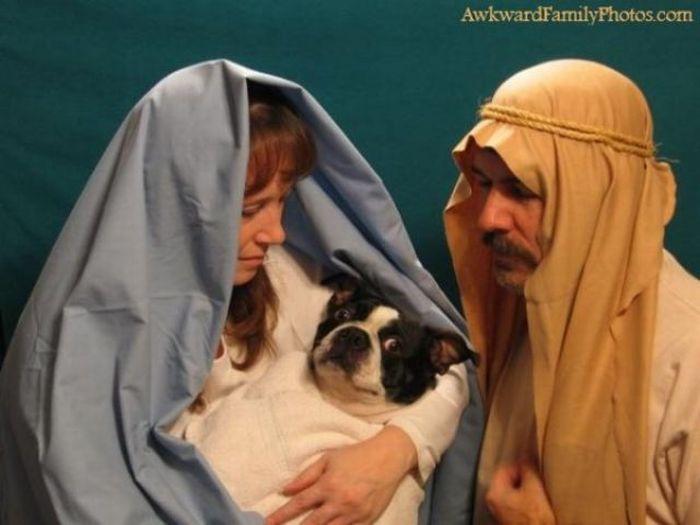 Смешные и странные семейные фотографии (51 фото)