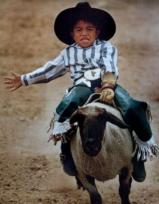 Ковбойское родео для детей (13 фото)
