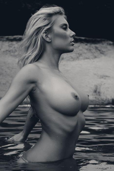 ������� ����� (94 ����)