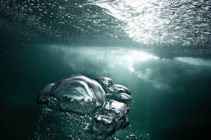 Водные пузыри (20 фото)