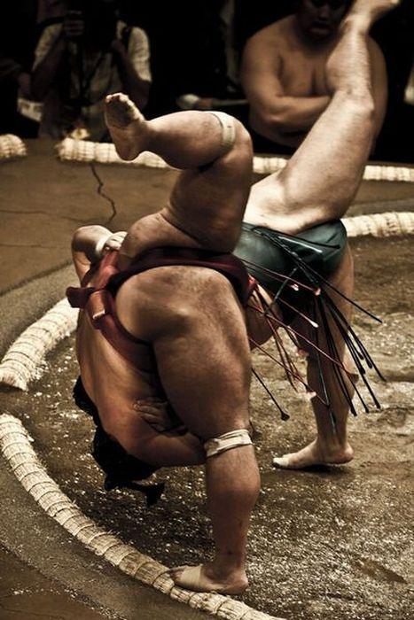 Борьба сумо (21 фото)