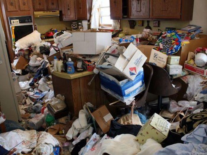 Домашняя свалка (20 фото)