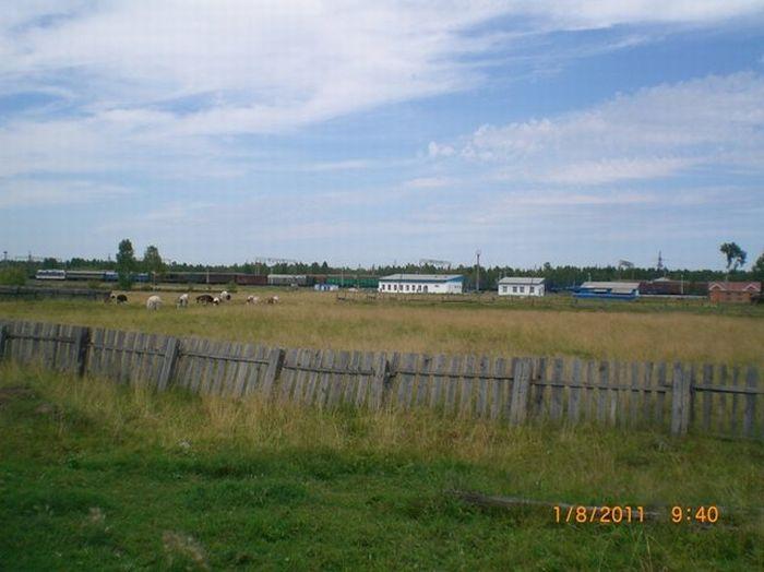 Сельская школа в сибирском поселке (26 фото)