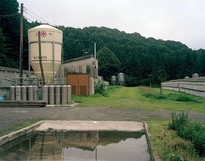 «Фукусима-1», новые фотографии (5 фото)