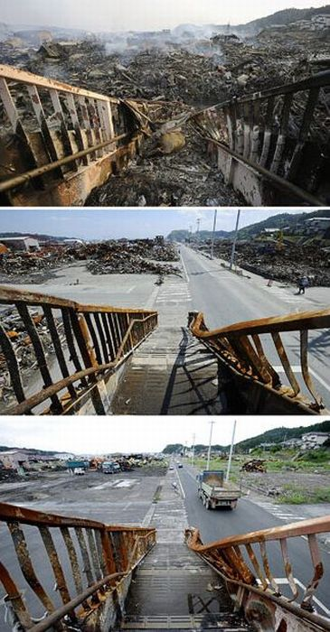 Япония спустя шесть месяцев (16 фото)