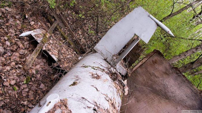 Тайна подмосковного леса (45 фото)