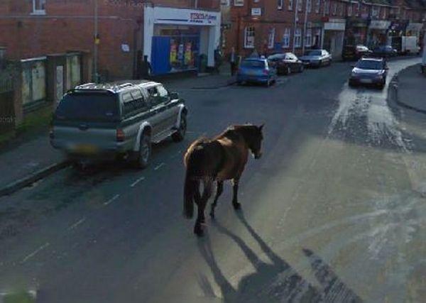 google street view проститутки