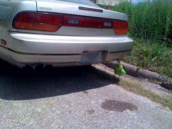 Автомобильные брелки (31 фото)