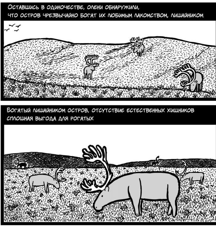 Поучительная история (12 картинок)
