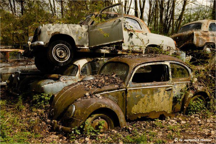 Кладбище ретро автомобилей (28 фото)