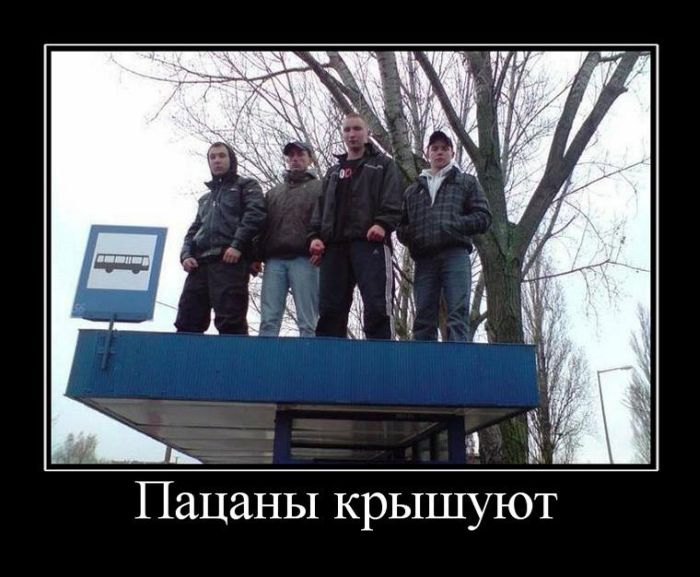 Демотиваторы (26 фото)