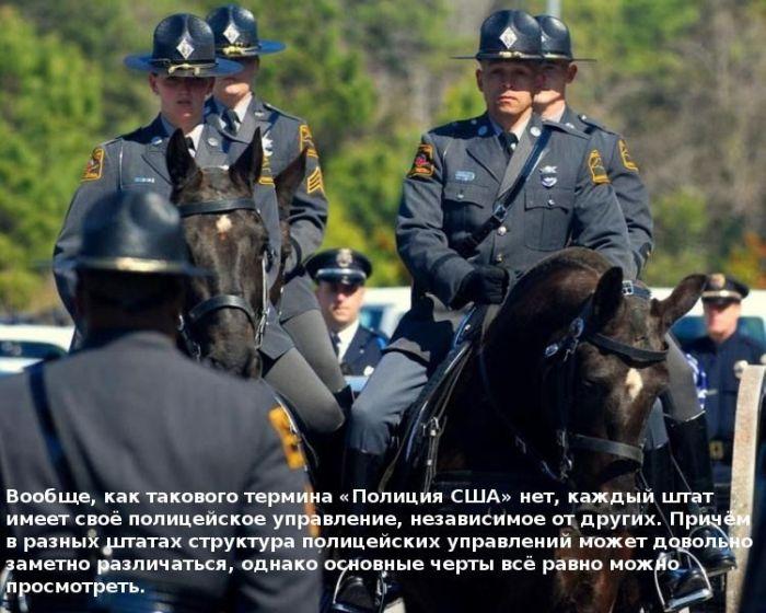 О полиции (10 фото)