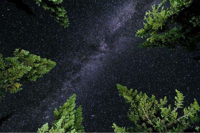 Звёздное небо и космос в картинках - Страница 4 Awesome_collection_08