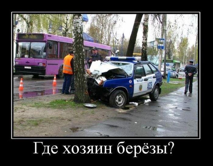 http://de.trinixy.ru/pics4/20110928/demotivatory_18.jpg