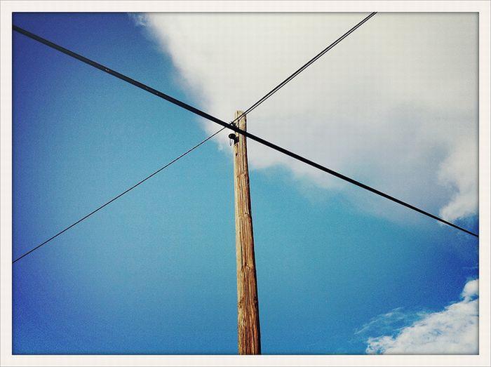 Фотографии, сделанные на мобильные телефоны (86 фото)
