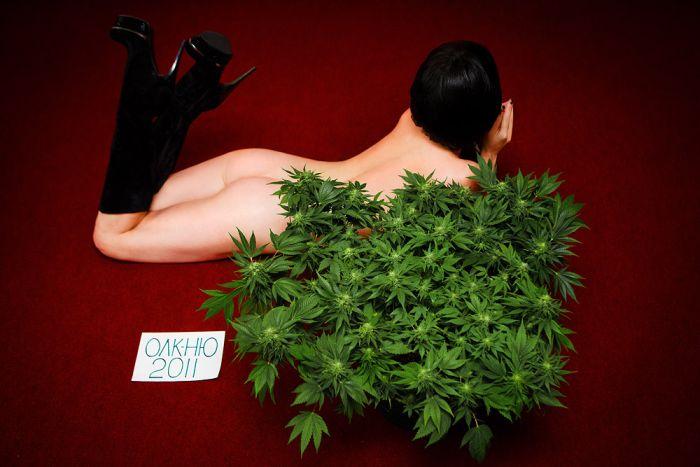 Девушки и трава (116 фото)