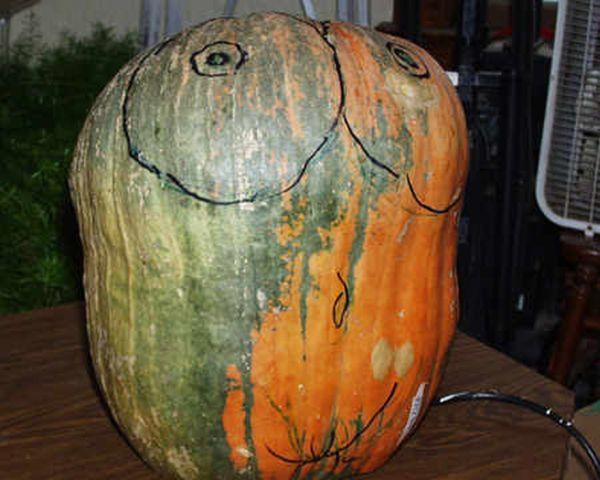 Тыква на Хэллоуин (9 фото)