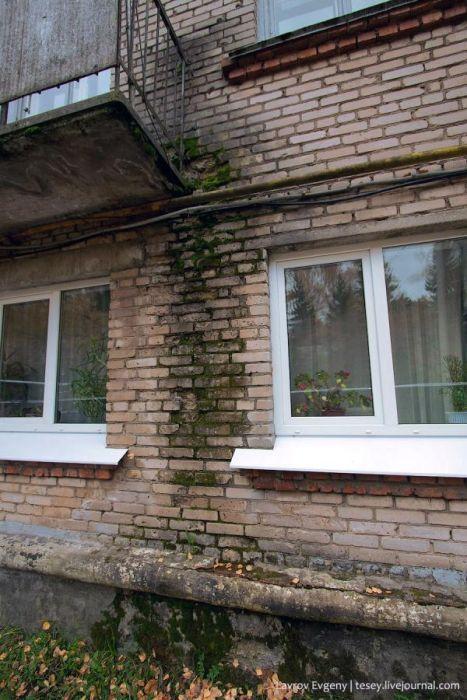 Умирающий военный город Рычково (42 фото)